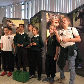 Квест в Дарвиновском музее для детей