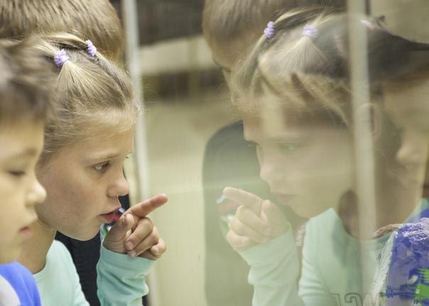 квест в Палеонтологическом музее для детей