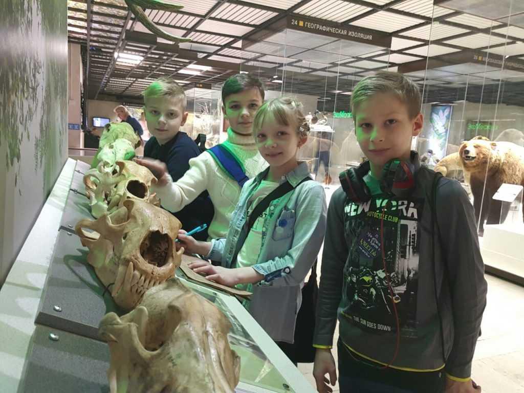 Квест в Дарвиновском музее