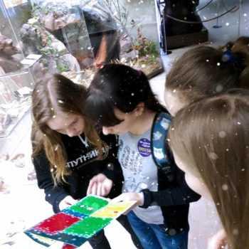 новогодний квест в Дарвиновском музее
