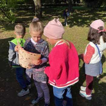поисковый квест для детей в парке
